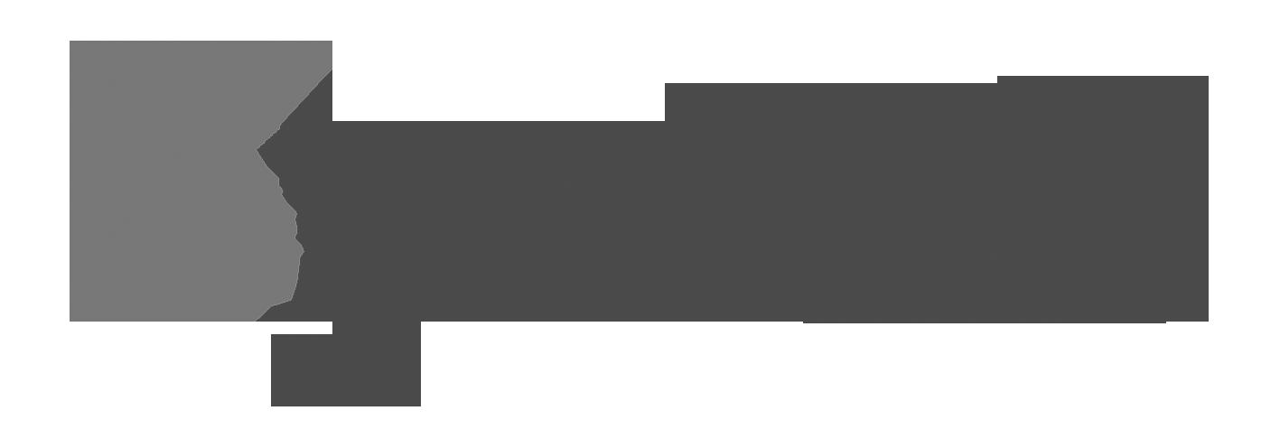 Synett
