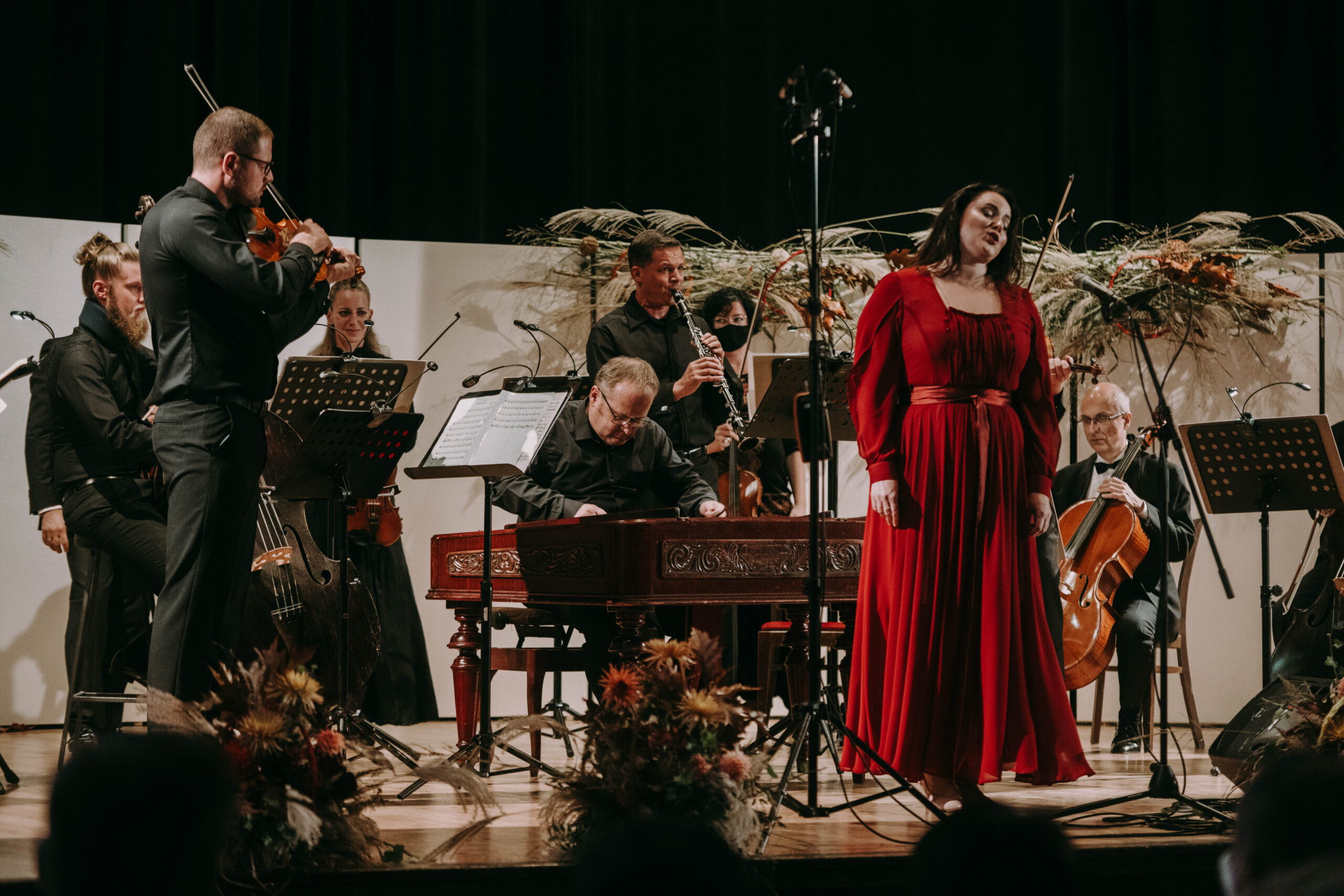 LVHF2020 Václav Hudeček & Ensemble Flair (c) Pavel Kristian